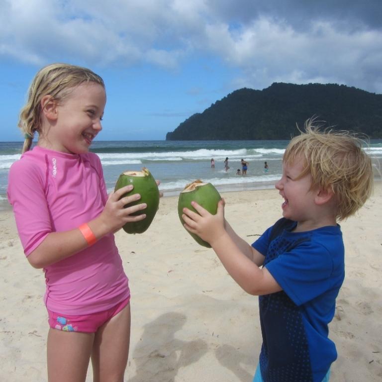 Eine frische Kokosnuss